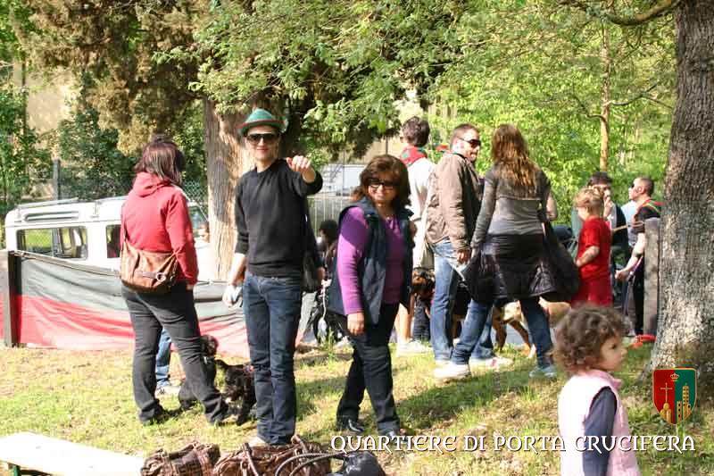 pedalata 2009 (2)