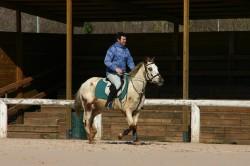 Allenamenti Equestrian Centre